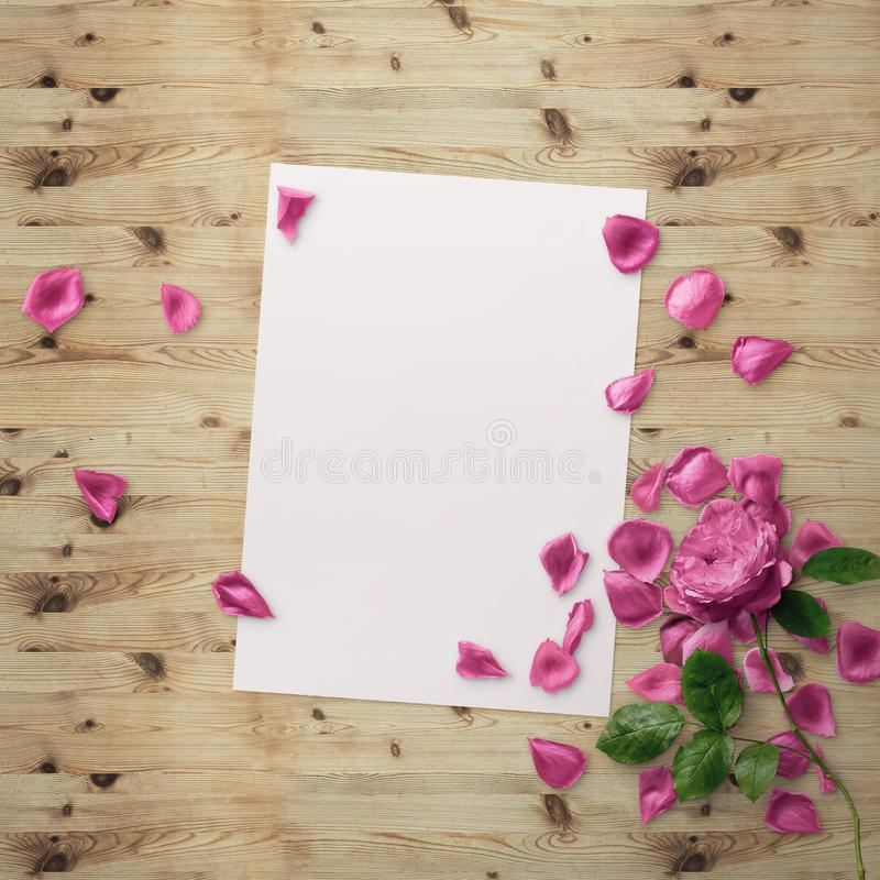 Floral Graphic Design. Frame with flowers and border. Fashion illustration. royalty free stock photo