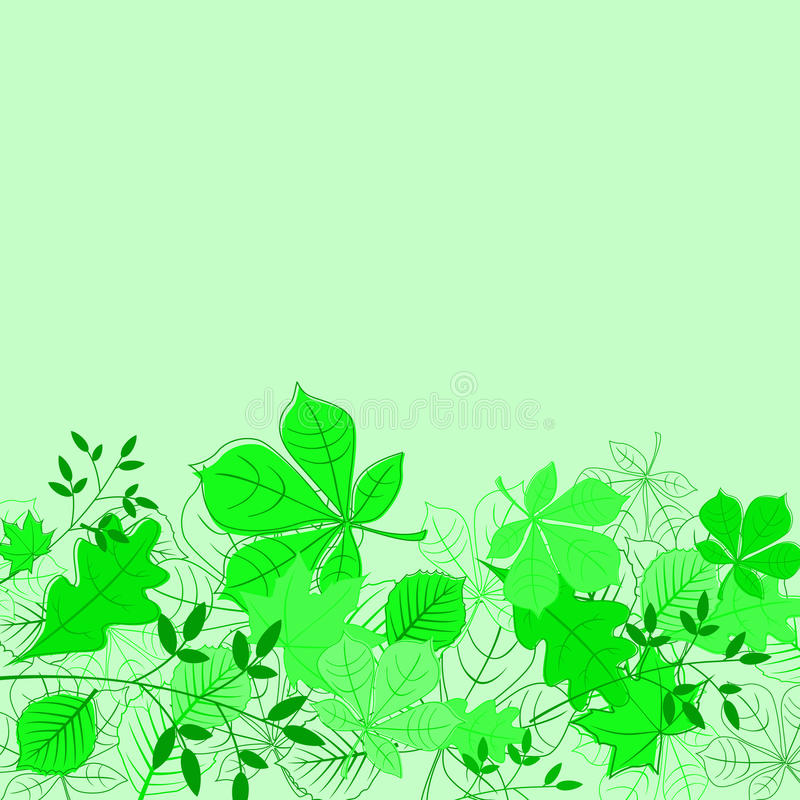 Floral green background stock photos