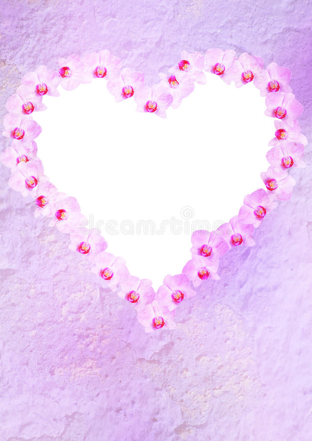 Floral heart. Created by pink orchids, background for your text or photo stock photos