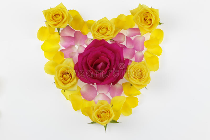 Download Floral Heart stock photo. Image of pink, romantic, shaped - 19452414