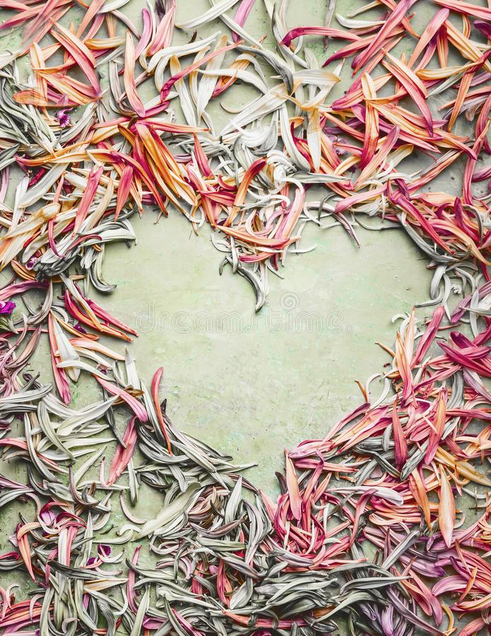 Floral heart frame made with colorful pastel petals, top view, flat lay. Creative flowers love. Concept stock images