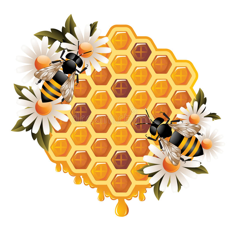 Floral Honey Concept. Honey concept representing honeycomb with oozing honey, flowers and working bees stock illustration
