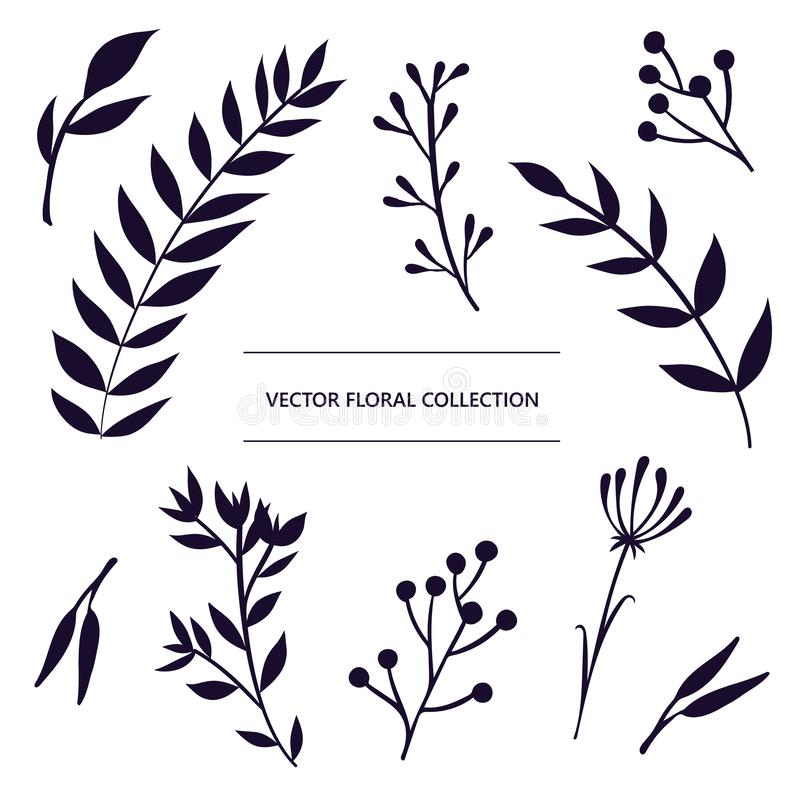 Floral isolated vector decorative elements set. Hand drawn collection of icons stock illustration