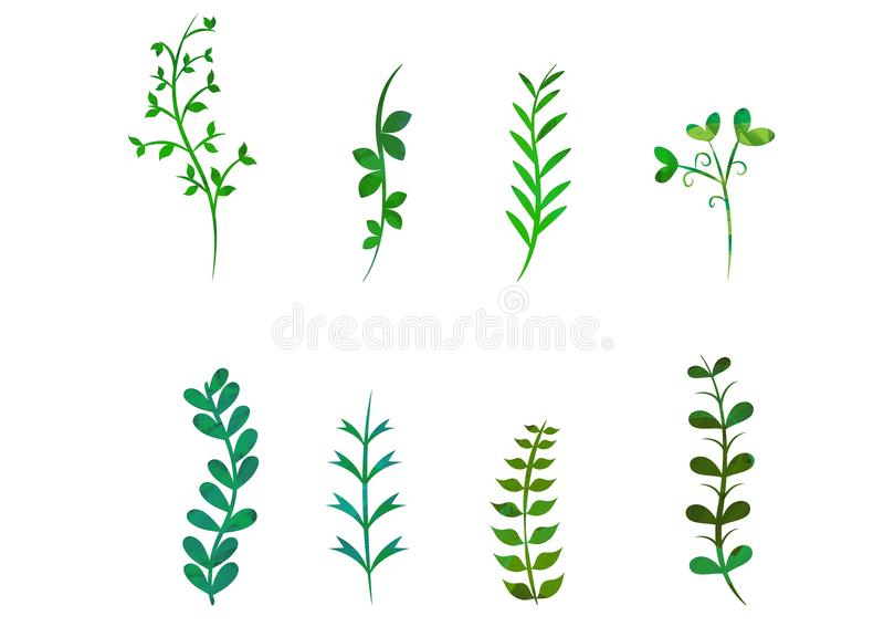 Floral laurel watercolor texture art green isolated white background vector illustration