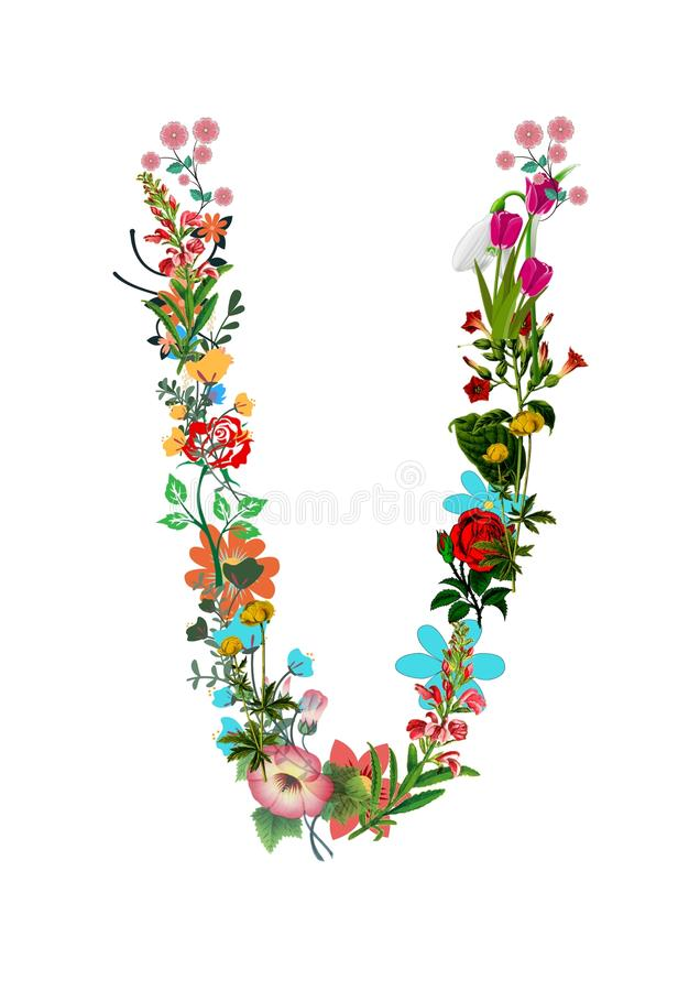 Floral Letter V on a white background. Initial Letter V, illustration royalty free stock photos