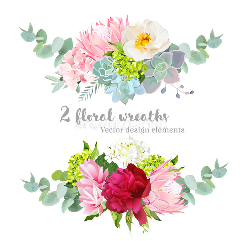 Floral mix wreath vector design set. Green, white and pink hydrangea, wild rose, protea, succulents, echeveria, burgundy red peony vector illustration
