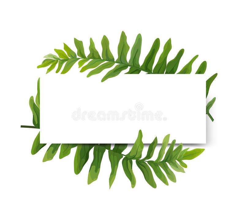 Floral modern vector card design: green Polypodiophyta fern frond leaves elegant greenery, forest wreath frame border print. Vector illustration, Wedding cute royalty free illustration
