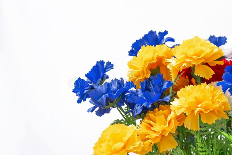 Floral multicolored bright decorative white background with mine space. Bouquet of blue, yellow, orange blooming buds of an. Artificial carnation flower, empty royalty free stock image