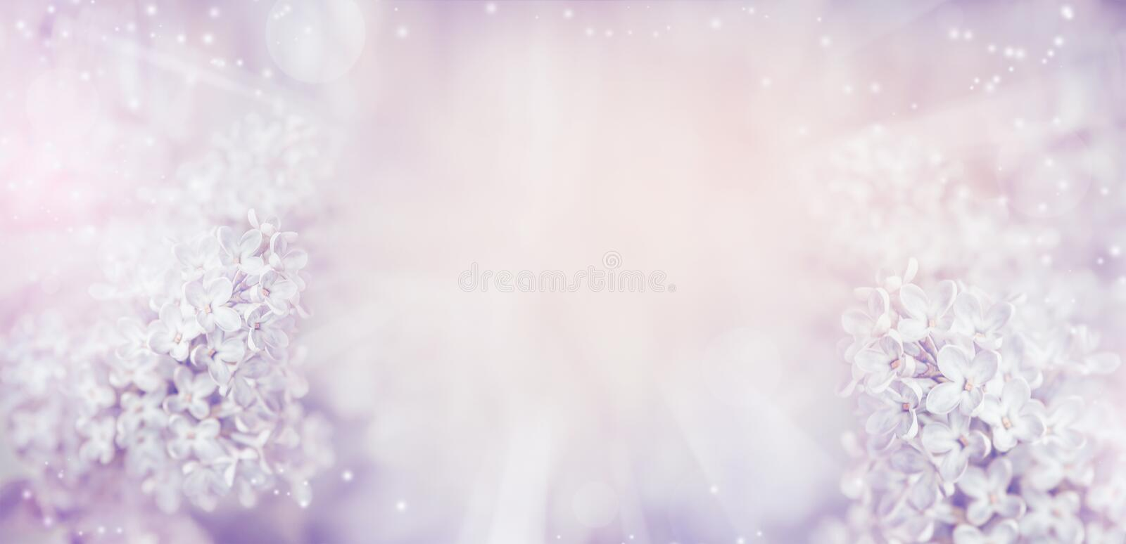 Floral nature background with beautiful light pastel lilac flowers. royalty free stock photos