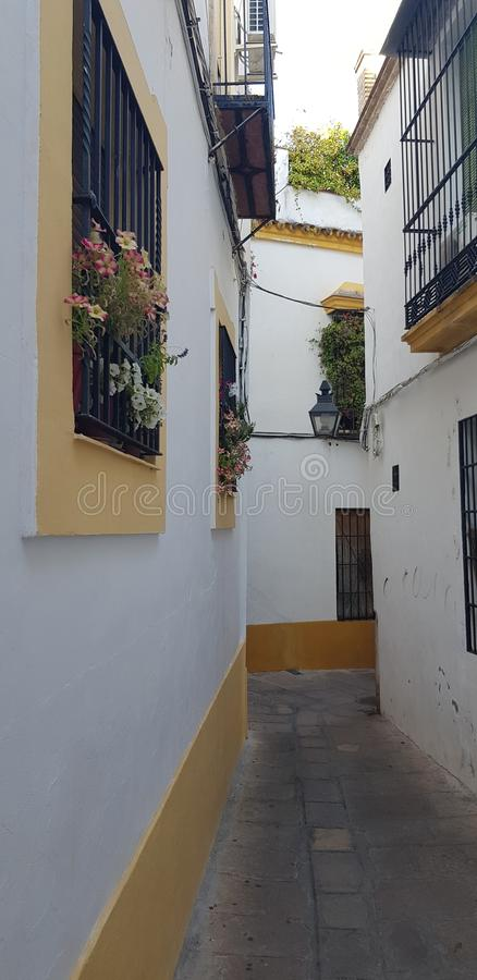 Andalusian Floral street garden royalty free stock image