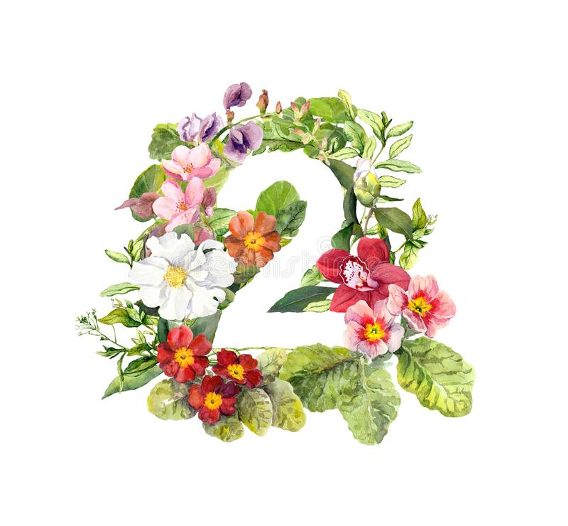 Floral number 2 - two from flowers. Water color vector illustration