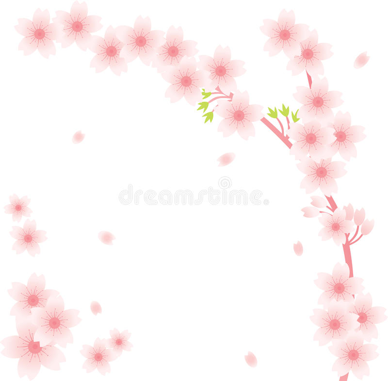 Floral Ornament - Sakura Royalty Free Stock Images