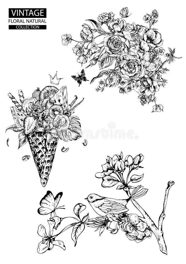 Floral Outline Coloring Vector Vintage Collections Stock Vector