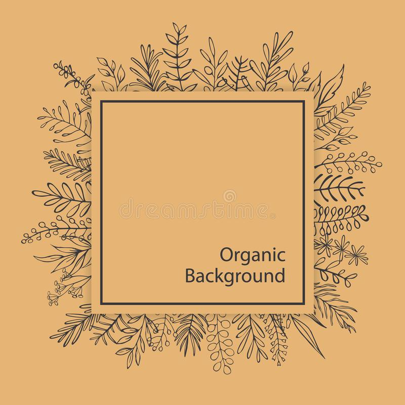 Floral outlined branches twigs black and beige organic square frame. Background stock illustration