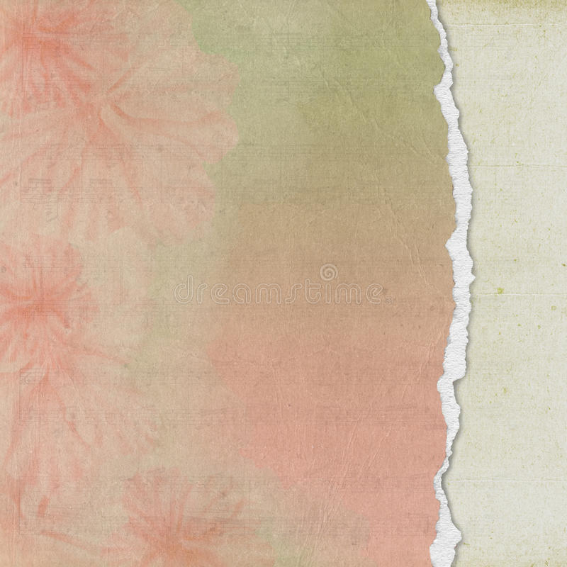 Download Floral Paper With Torn Edge Stock Illustration - Image: 25442490