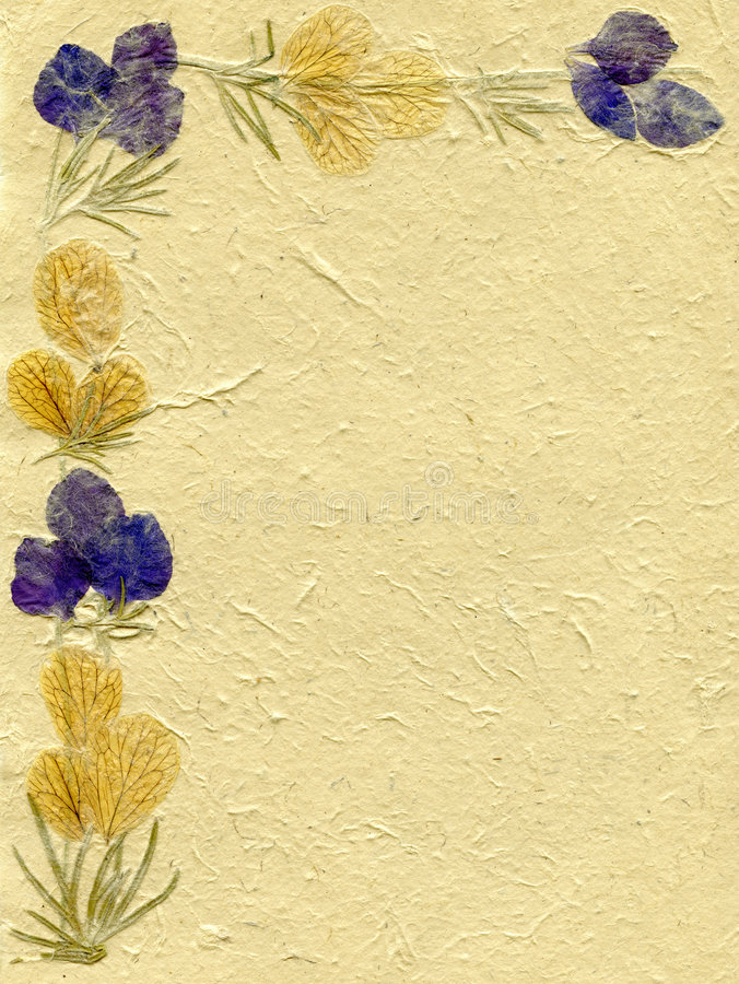Floral Parchment Royalty Free Stock Photos
