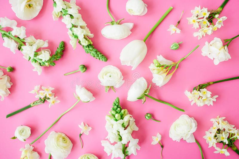 Floral pattern of beautiful white flowers on pink background. Flat lay, top view. Floral background. royalty free stock photo