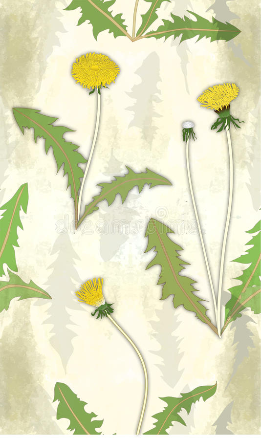 Floral pattern with dandelions stock illustration