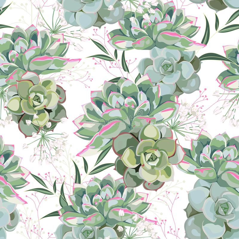 Floral pattern, delicate flower wallpaper, white herbs and green pink succulent. Delicate feminine pattern on the white background royalty free illustration