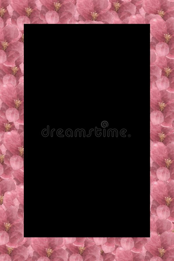 Floral Pattern Frame with Hydrangea - Flowers Decorative 皇族释放例证