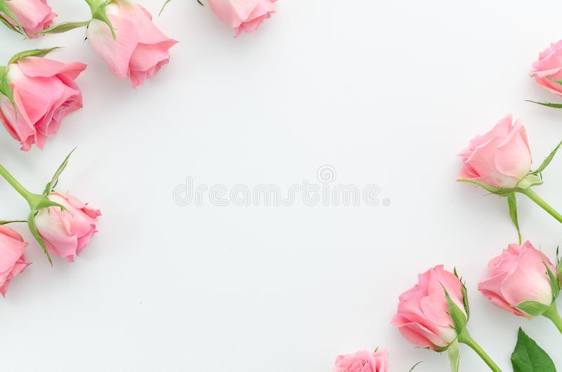 Floral pattern, frame made of beautiful pink roses on white background. Flat lay, top view. Valentine`s background royalty free stock photo