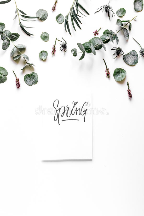Floral pattern with green leaves on white background top view mockup. Floral pattern with green leaves and calligraphy for spring design on white background top royalty free stock photos