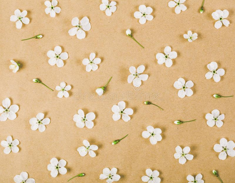 Floral pattern made of white spring flowers and buds on brown paper background. Flat lay. Top view stock photo