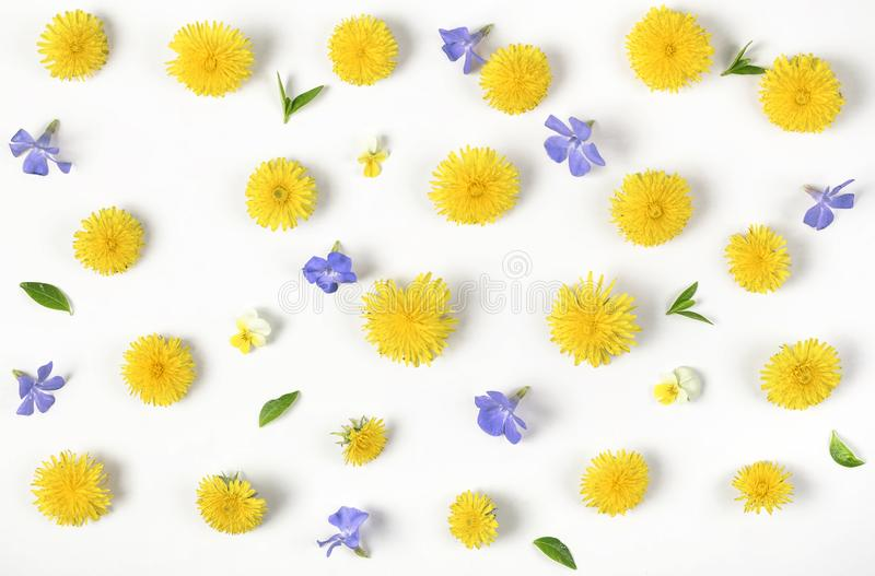 Floral pattern made of yellow dandelion, lilac flowers and leaves isolated on white background. Flat lay. Top view stock photos