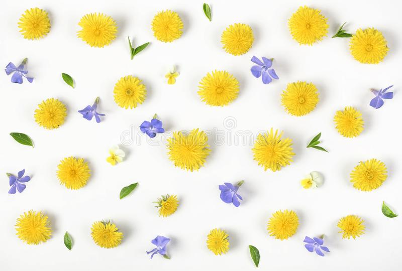 Floral pattern made of yellow dandelion, lilac flowers and leaves isolated on white background. Flat lay. Top view stock images