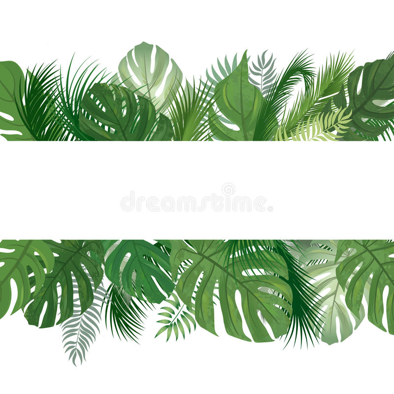 Floral pattern. Tropical Palm tree leaves background. royalty free illustration