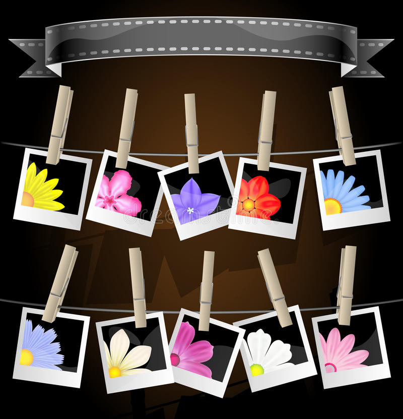 Download Floral photo album display stock vector. Illustration of pegs - 20975585