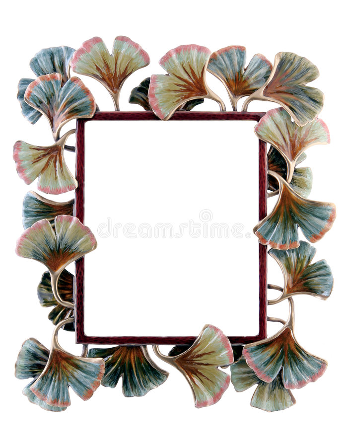 Floral photo frame royalty free stock photography