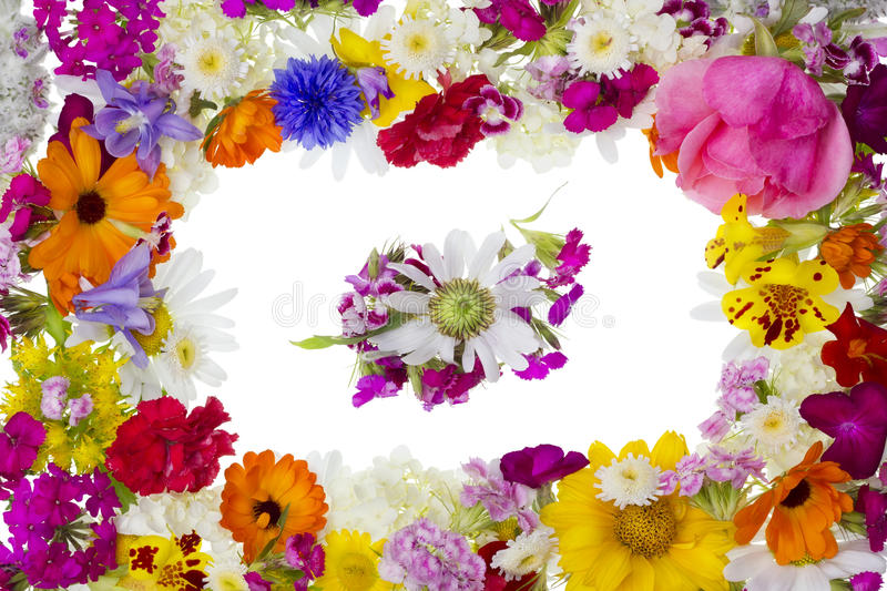 Floral picture pfoto frame royalty free stock images