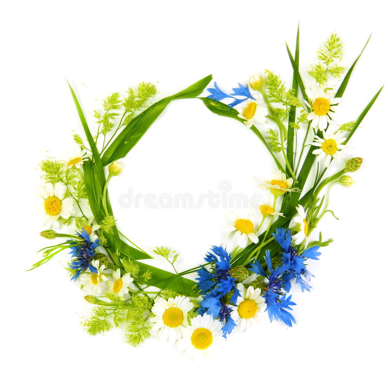 Floral Round Frame Of Flowers Royalty Free Stock Image