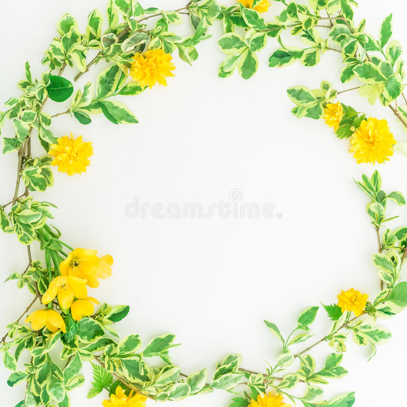 Floral round frame made of branches with leaves and yellow flowers on white background. Flat lay, top view. stock image