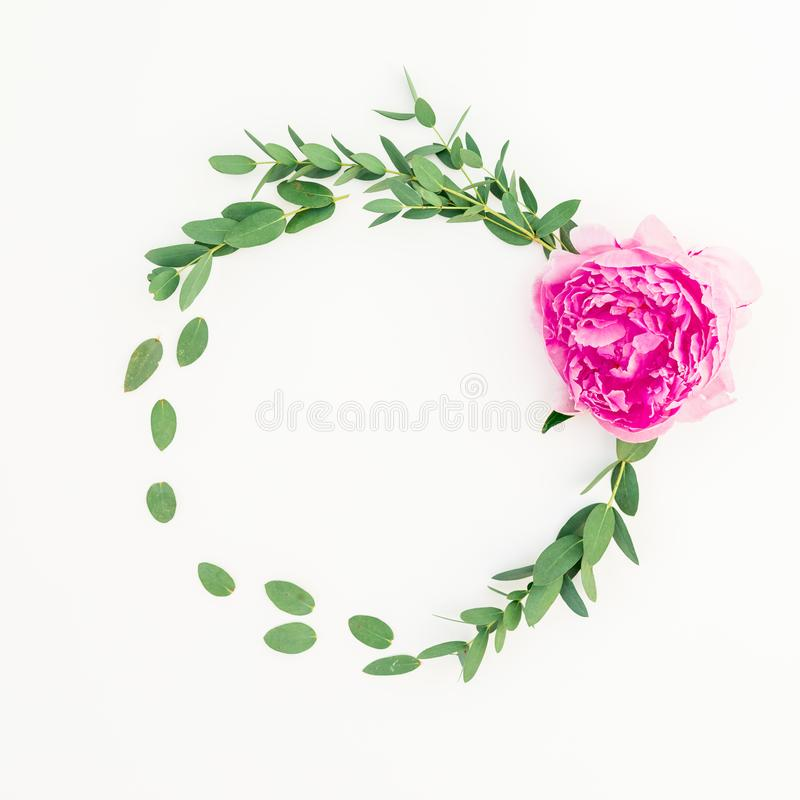 Floral round frame of pink peony flower, hypericum and eucalyptus on white background. Flat lay stock photos