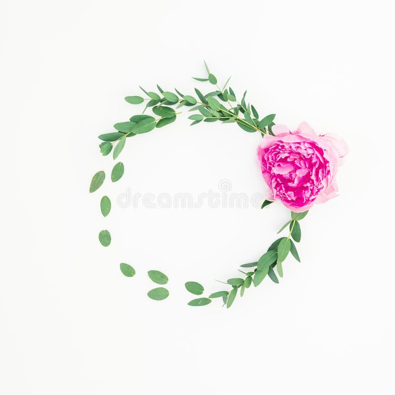 Floral round frame with pink peony flower, hypericum and eucalyptus on white background stock images