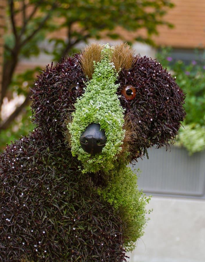 Download Floral sculpture stock photo. Image of jardin, sculpture - 26559360