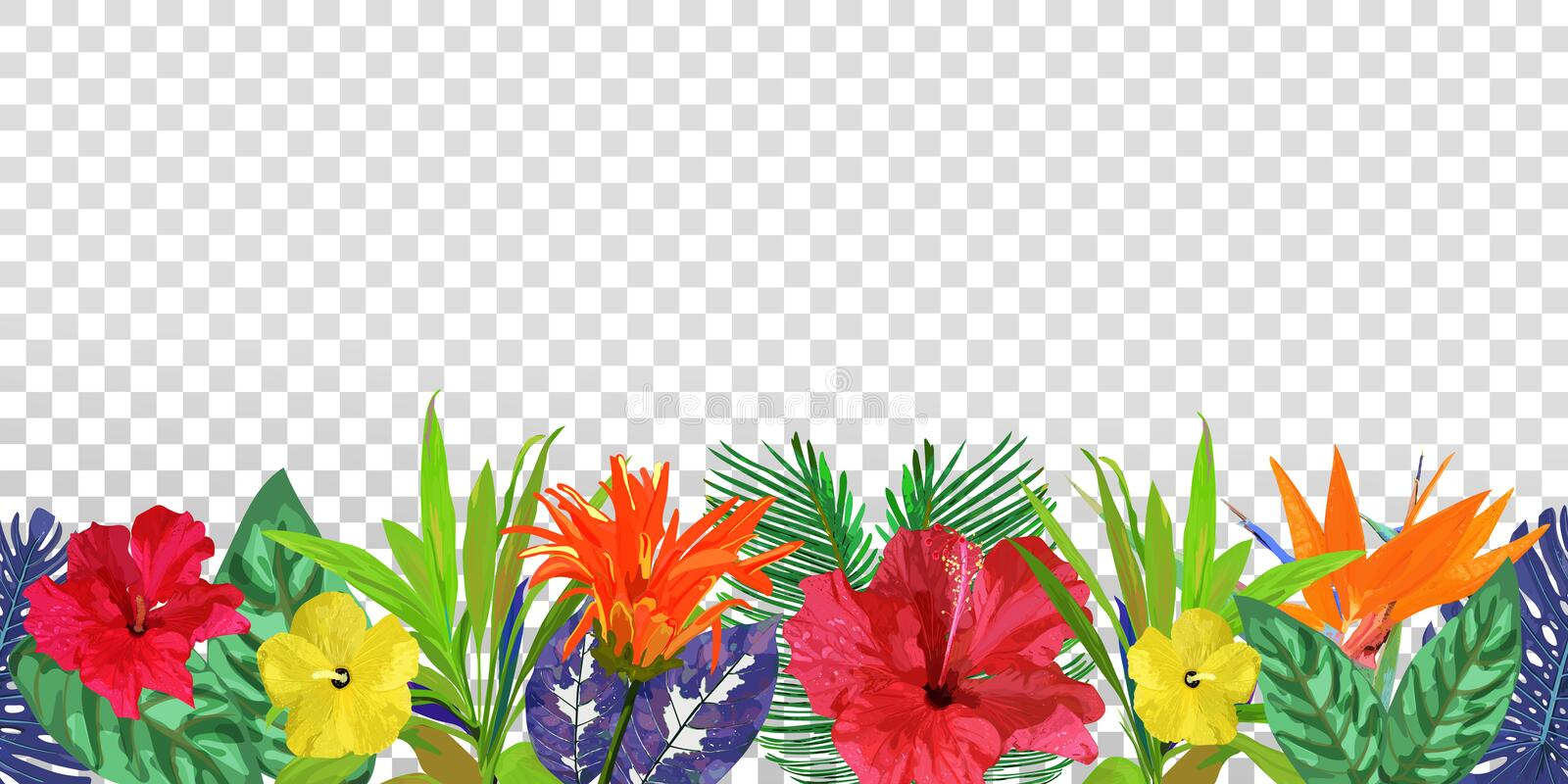 Download Floral Seamless Border Background With Isolated Colorful Hand D Stock Vector