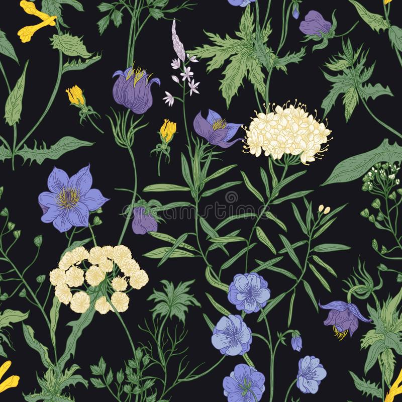 Floral seamless pattern with blooming wild flowers and meadow flowering plants on black background. Romantic floral royalty free illustration