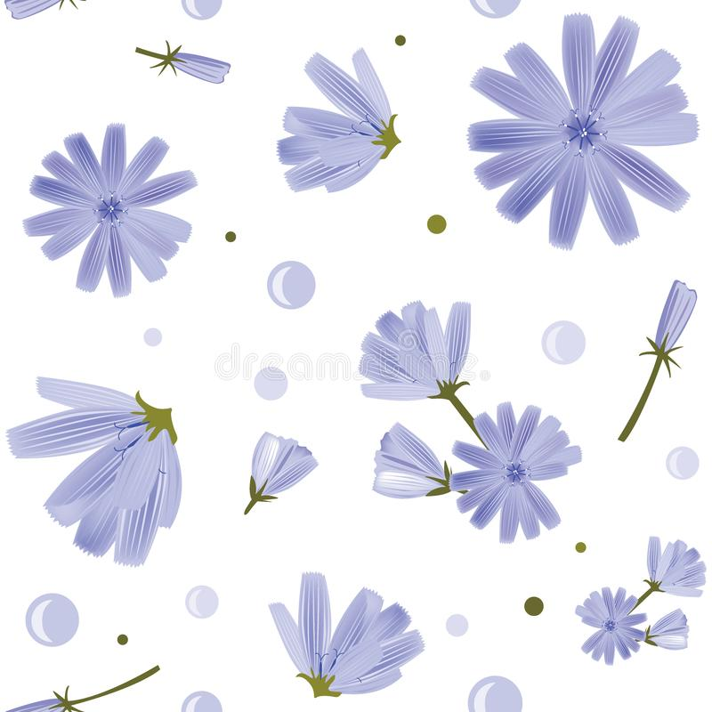 Floral seamless pattern with chicory flowers on white background. Cute blue flowers. Design element for textile, fabrics vector illustration
