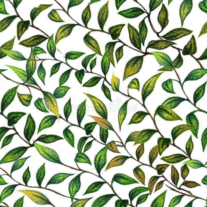 Floral seamless pattern drawn watercolor pencils. Green hand drawn leaves. Perfect for fabric, wallpaper, bed linen and tablecloths stock illustration