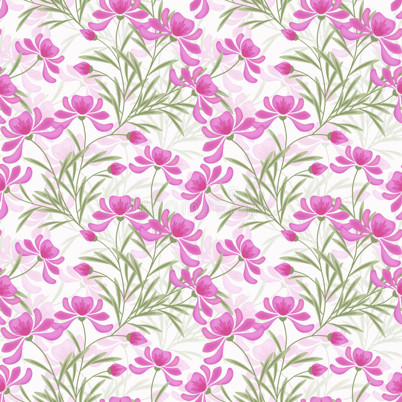 Floral seamless pattern , flowers white background. Floral seamless pattern, pink flowers irises white background stock illustration