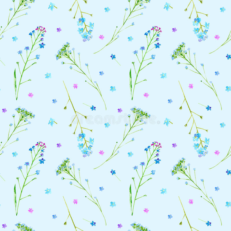 Floral seamless pattern of a forget-me-not flowers. royalty free illustration
