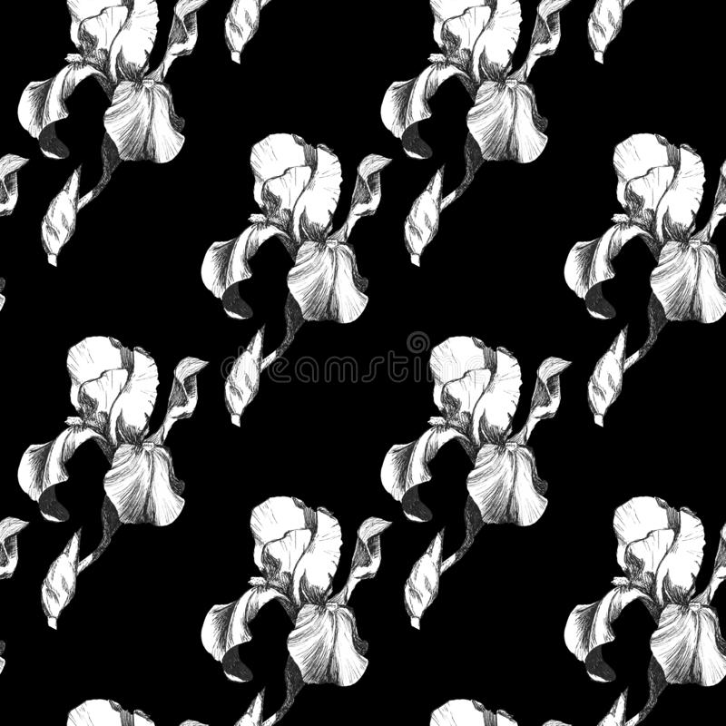 Floral seamless pattern with hand drawn ink iris flowers on black background. Flowers lined up in harmonious geometric. Sequence stock illustration