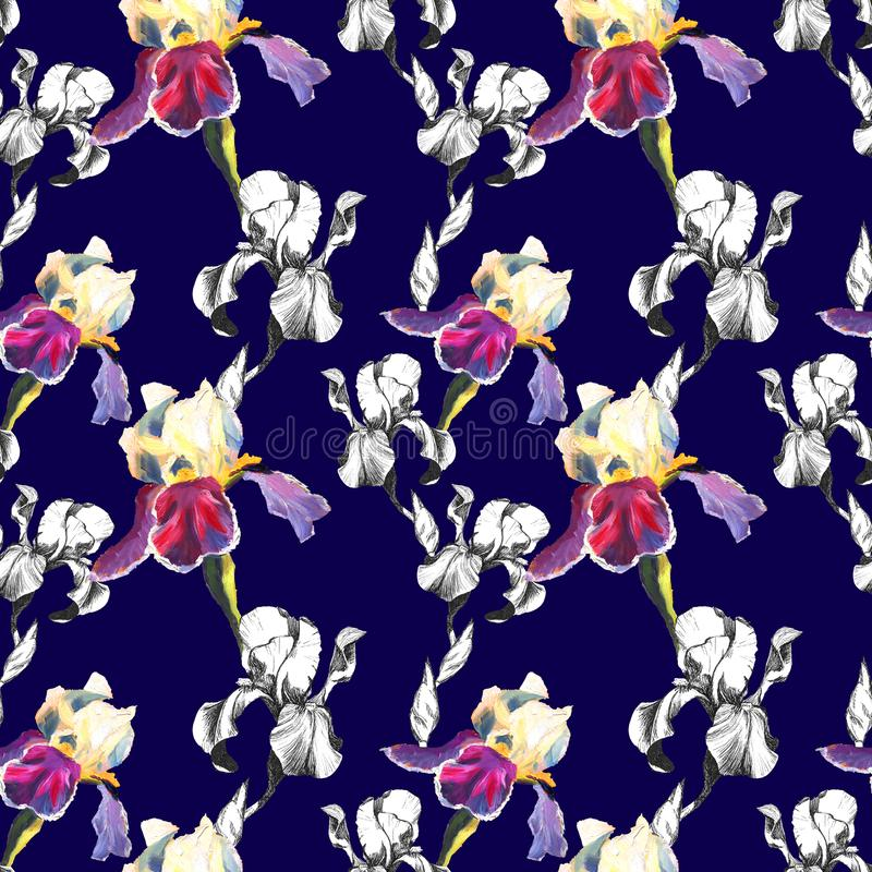 Floral seamless pattern with hand drawn ink iris flowers on blue background. Flowers lined up in harmonious uninhibited. Sequence stock illustration