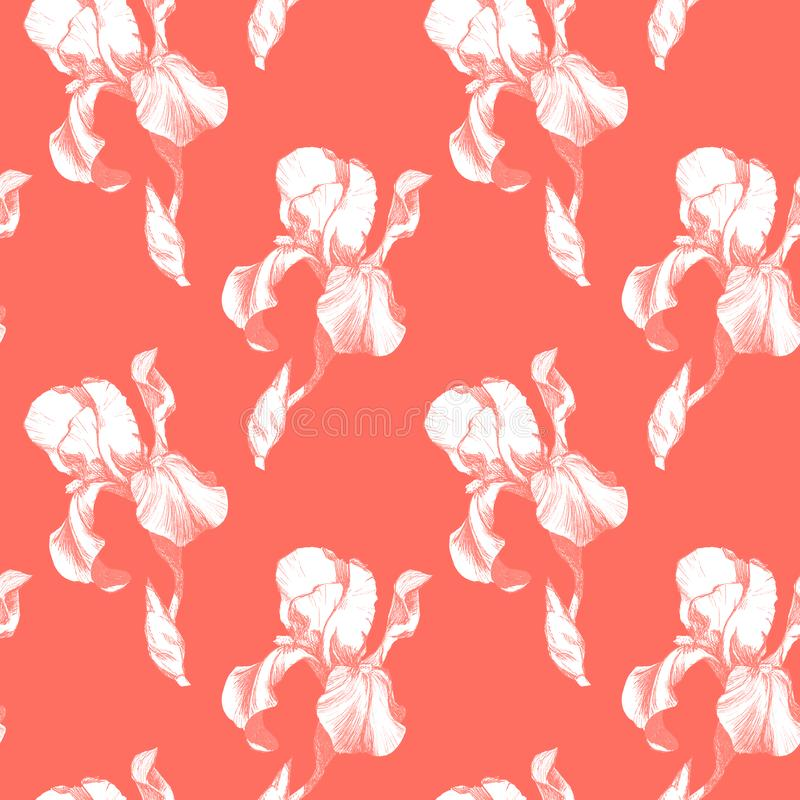 Floral seamless pattern with hand drawn ink iris flowers on coral living background. Flowers lined up in harmonious. Geometric sequence stock illustration