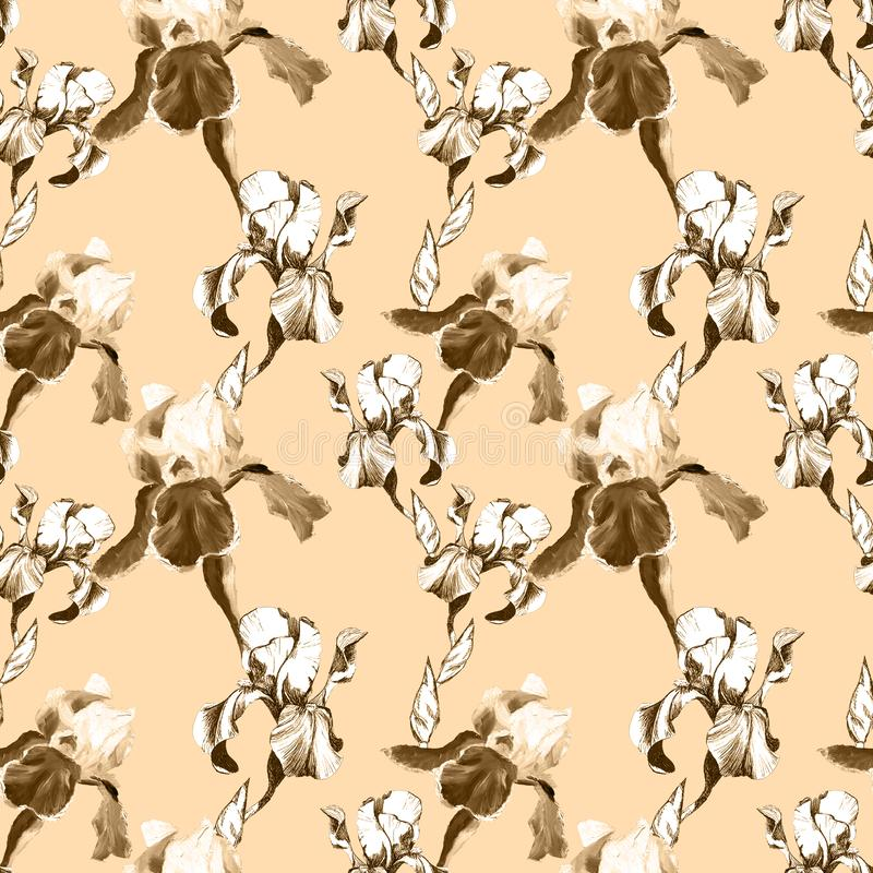 Floral seamless pattern with hand drawn ink iris flowers on peachy beige background. Flowers lined up in harmonious stock illustration