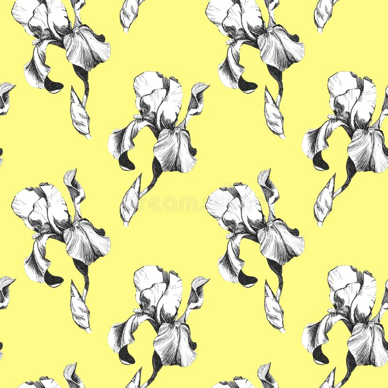 Floral seamless pattern with hand drawn ink iris flowers on yellow background. Flowers lined up in harmonious geometric stock illustration