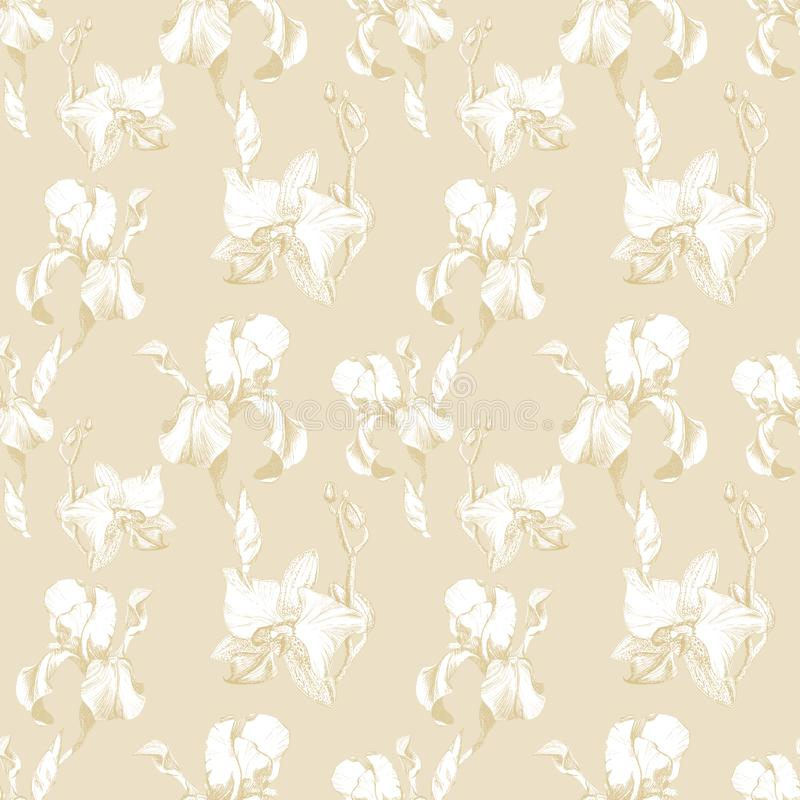 Floral seamless pattern with hand drawn ink iris and orchid flowers on beige background. Flowers lined up in harmonious. Uninhibited sequence vector illustration